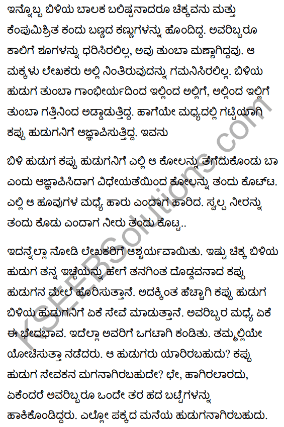Jamaican Fragment Summary in Kannada 2