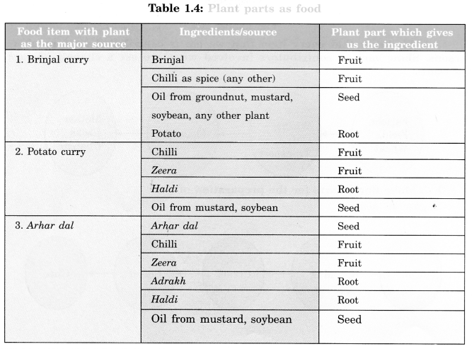 Food Where Does It Come From Class 6 Extra Questions Science Chapter 1 - 6