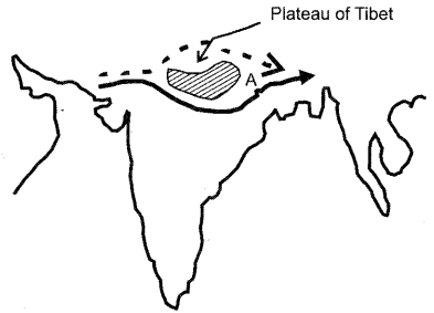 ISC Geography Question Paper 2013 Solved for Class 12 - 1