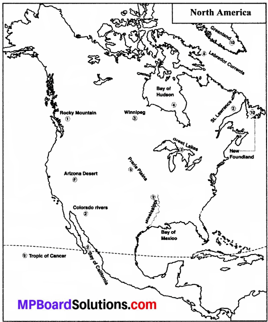 MP Board Class 8th Social Science Solutions Chapter 13 North America-Geographical Features-2