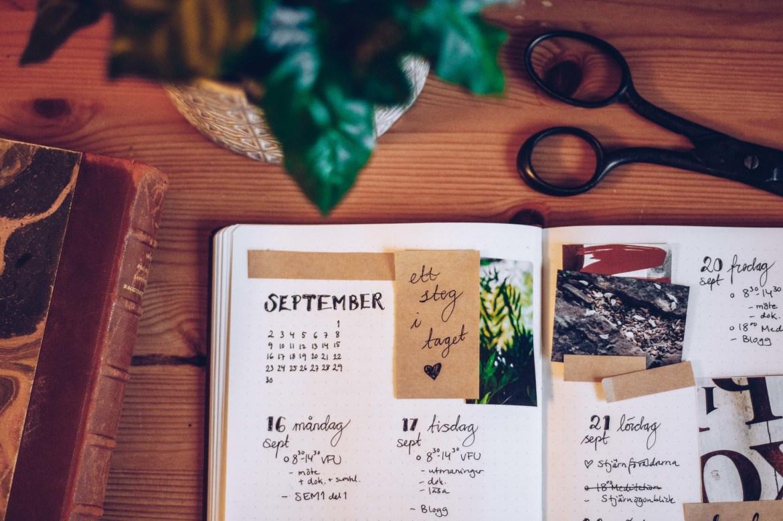 Bullet journal vecka 38 - reaktionista.se