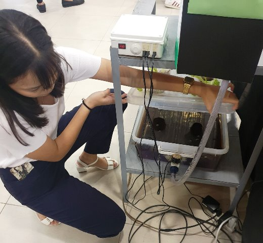 Hydroponics Vermitea at Commercenter's Robocon 2019