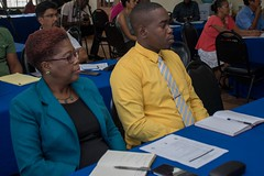 Participants at the consultation.
