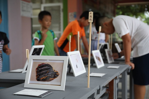 【小事報】小編策展:「小物紀念公園」展覽