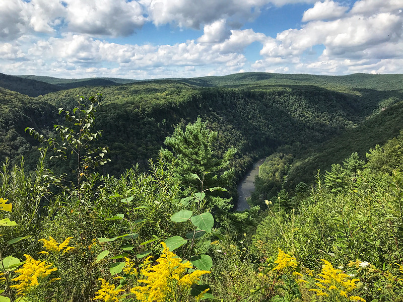 Pine Creek Gorge from Leonard Harrison State Park