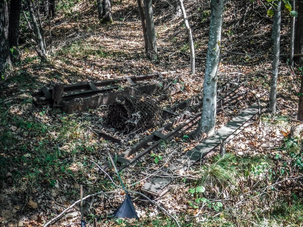 Berry Shoals Pond-42