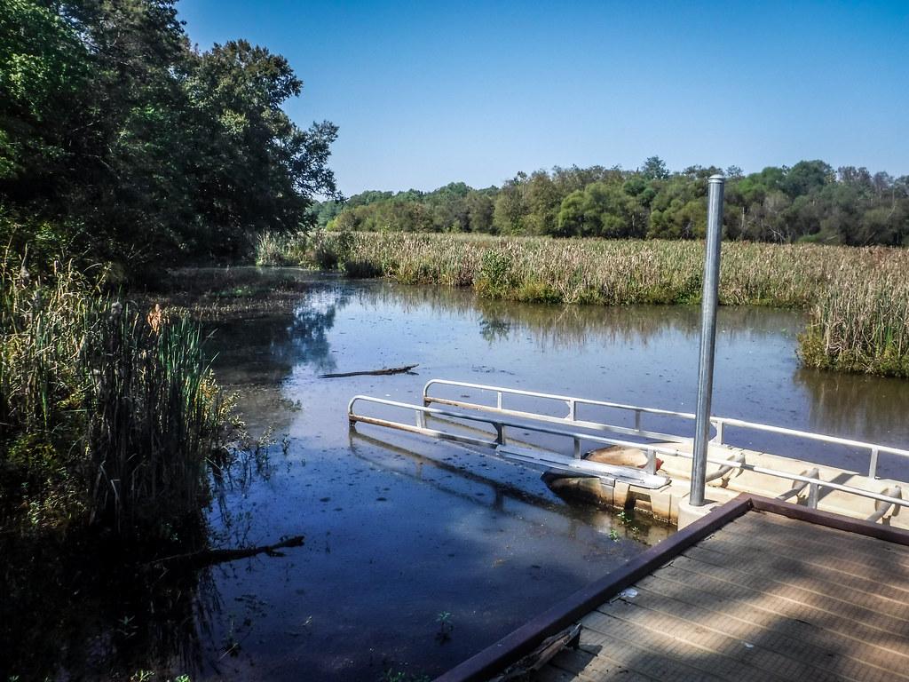 Berry Shoals Pond-2