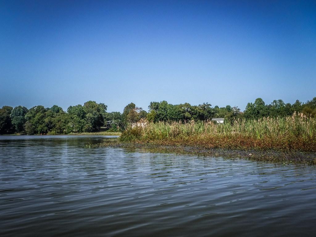 Berry Shoals Pond-12
