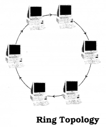 UP Board Solutions for Class 10 Computer Science Chapter 3 Network LAN and WAN Q3.1