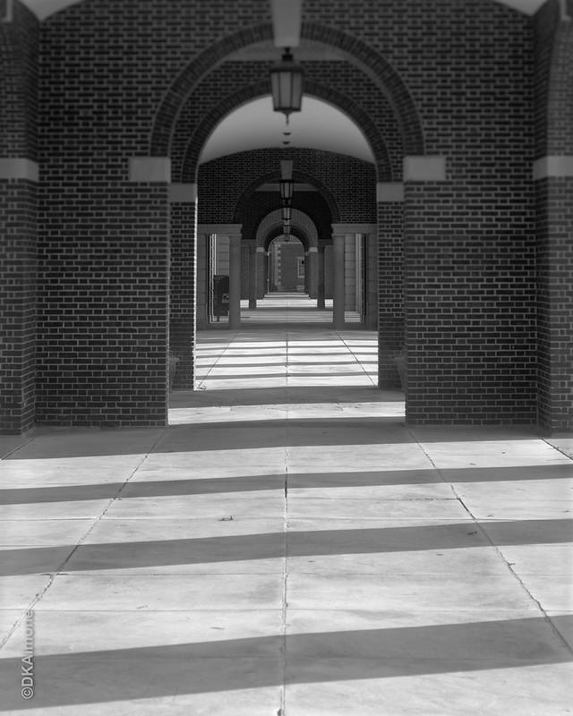 Portals, Lines, Pathway