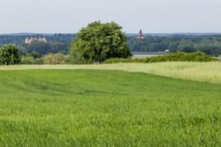 Blick nach Moritzburg