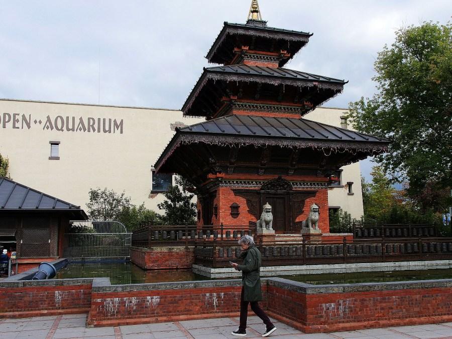 Hagenbeck Aquarium| foto met dank aan Observatorix