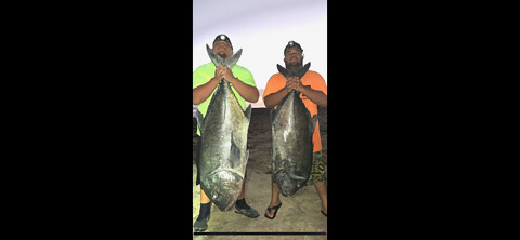 This was from Sunday night Monday morning almost got the 100 pound ulua. We was 10 pounds short of a 100.