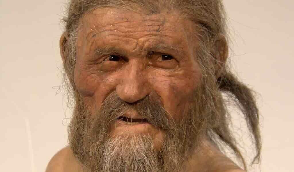 Ötzi-hommes-des-glaces-révélé-par-la-mousse-dans-son-estomac