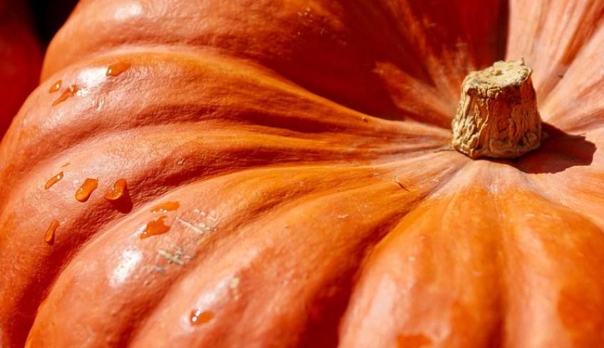 November 2019 Foodies Read