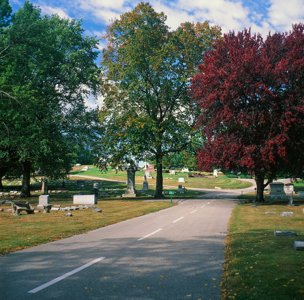 A lane in the cemetery