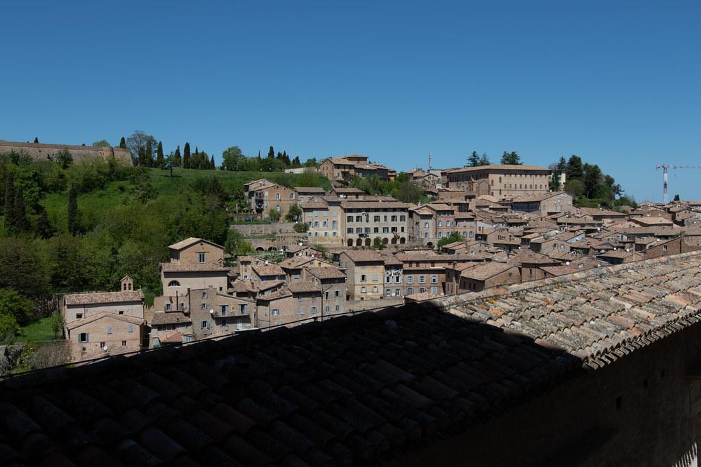Urbino_02052019-474A1359-yuukoma
