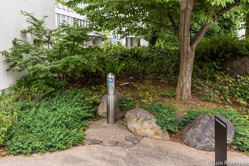 Fontaine pour chien dans le jardin de T-Site Daikanyama