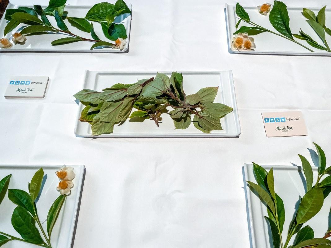Orchids Afternoon Tea at Halekulani Hotel by Tea Chest Hawaii and Maui Farm Tea - Haleakala Tea   Wanderlustyle.com