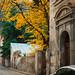Autumn in old Tbilisi