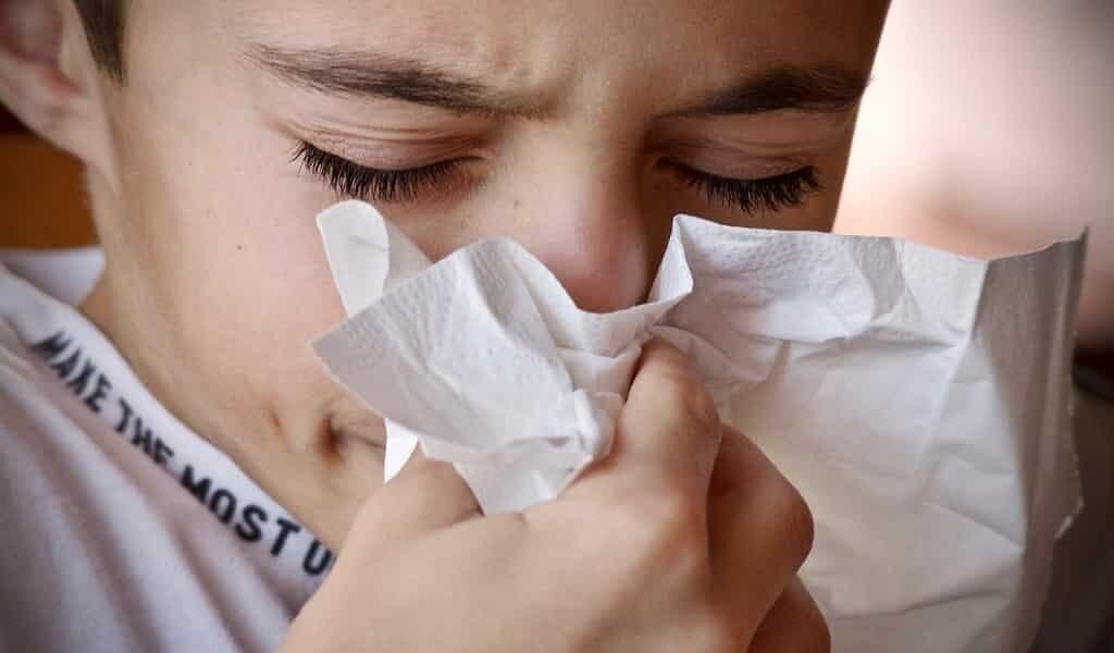 une-technique-qui-identifie-les-cellules-T-sensibilisées-aux-allergies