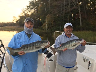 Photo of two men holding striped bass