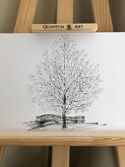 Trees of Oxford