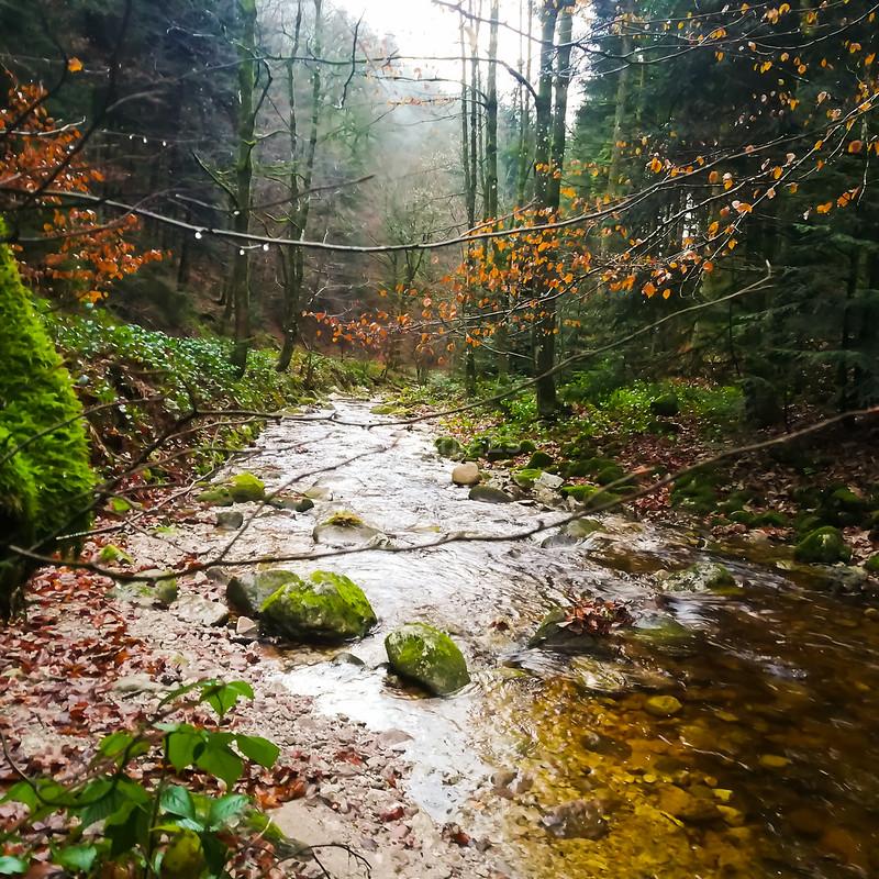 Cascadas de Allerheiligen -Qué ver en la Selva Negra_ClickTrip