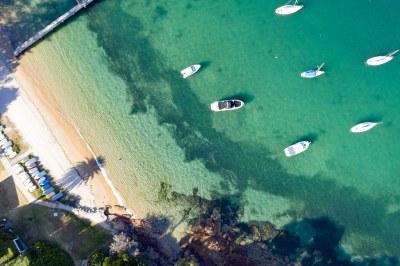 Palm shadow on #sydneyharbour #marineexplorer