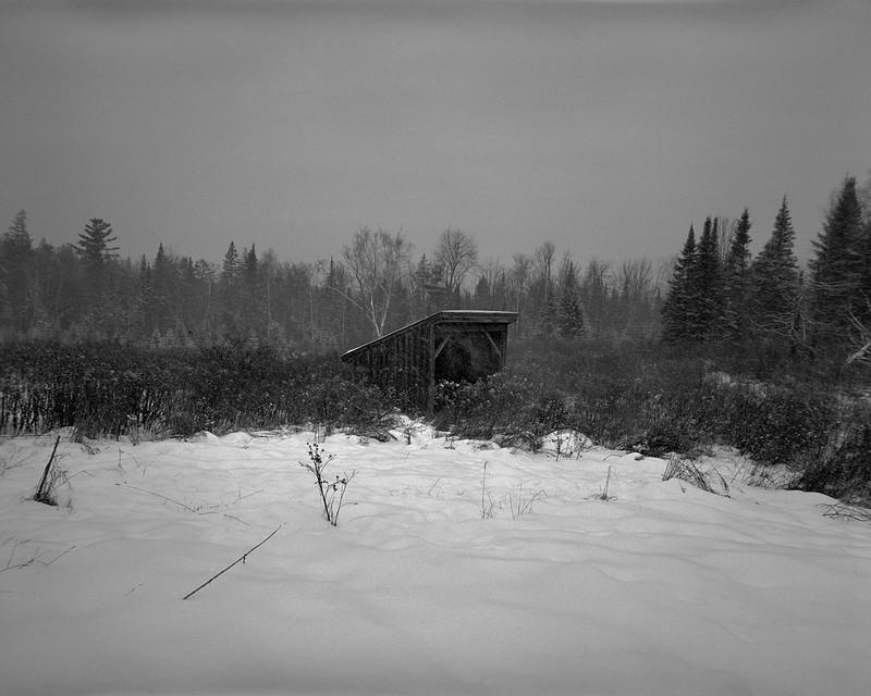 Forgotten Snows