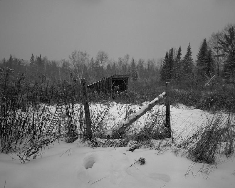 Forgotten Snows 2