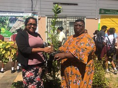 NAREI Regional Crop Extension Officer Candy Thomas hands over a plant to a teacher at Central High School
