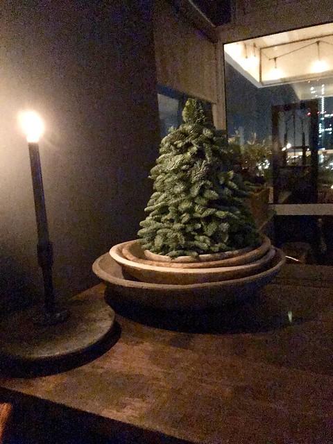 Nobilis boompje in houten schaal eettafel