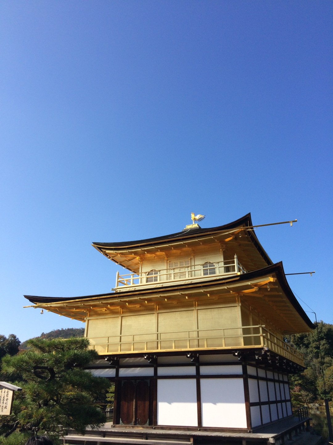 Close up of Kinkakuji