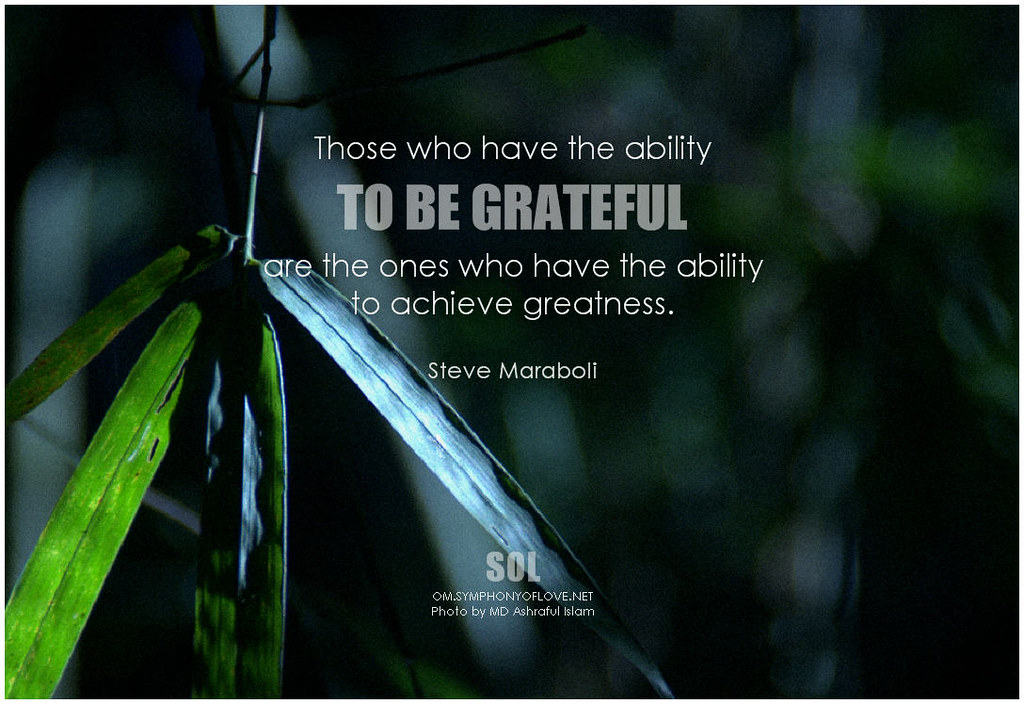 Gratitude for Hardship & Grace – A Sunday Message