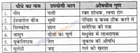 UP Board Solutions for Class 6 Environment Chapter 7 वन एवं वन्य जीव 1