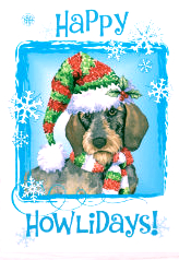 happy_howlidays_wirehaired_dachshund_holiday_card-r632fb8b5e4f1482293222fd5fae5fef4_em0c6_307
