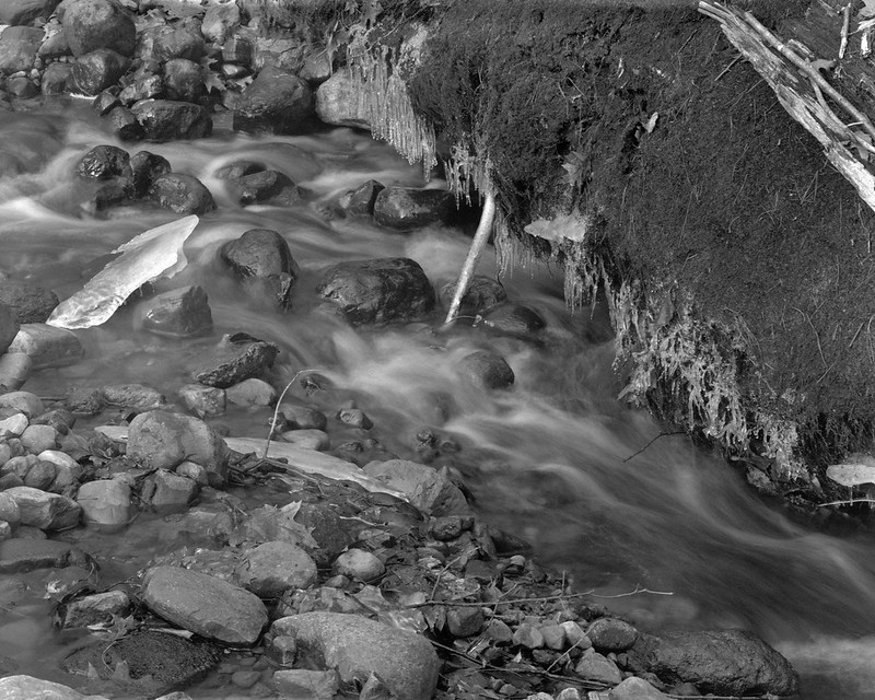 Creek Detail, Ice 1
