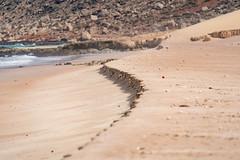 Socotra - -1-4