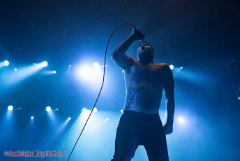 Alexisonfire + The Distillers @ Pacific Coliseum - January 25th 2020