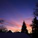 sunrise beauty 2020