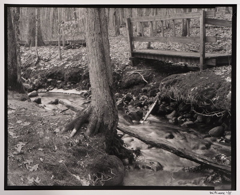 Creek, Bridge, Ora Phelps Preserve