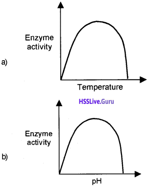 Plus One Zoology Chapter Wise Questions and Answers Chapter 4 Biomolecules 29