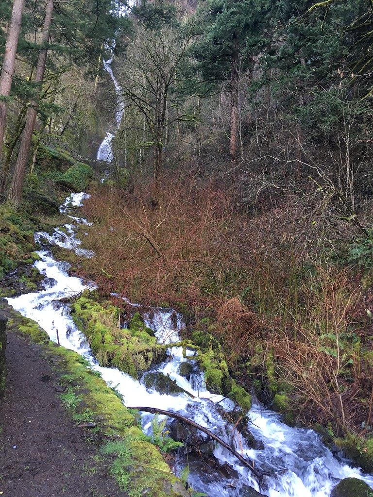 Wahkeena Falls in February as seen from the platform along the historic highway.
