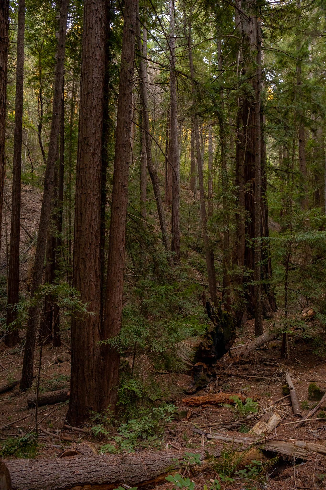 02.09. Sanborn County Park