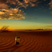 View - Namib Dune Star Camp