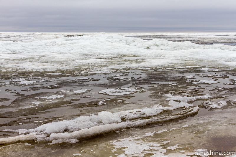 Финский залив, Комарово