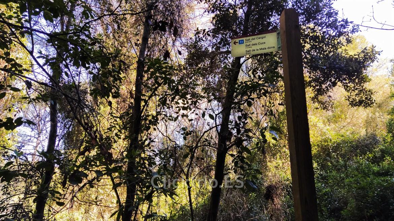 Ruta senderismo saltos de agua de Cabrera d'Anoia