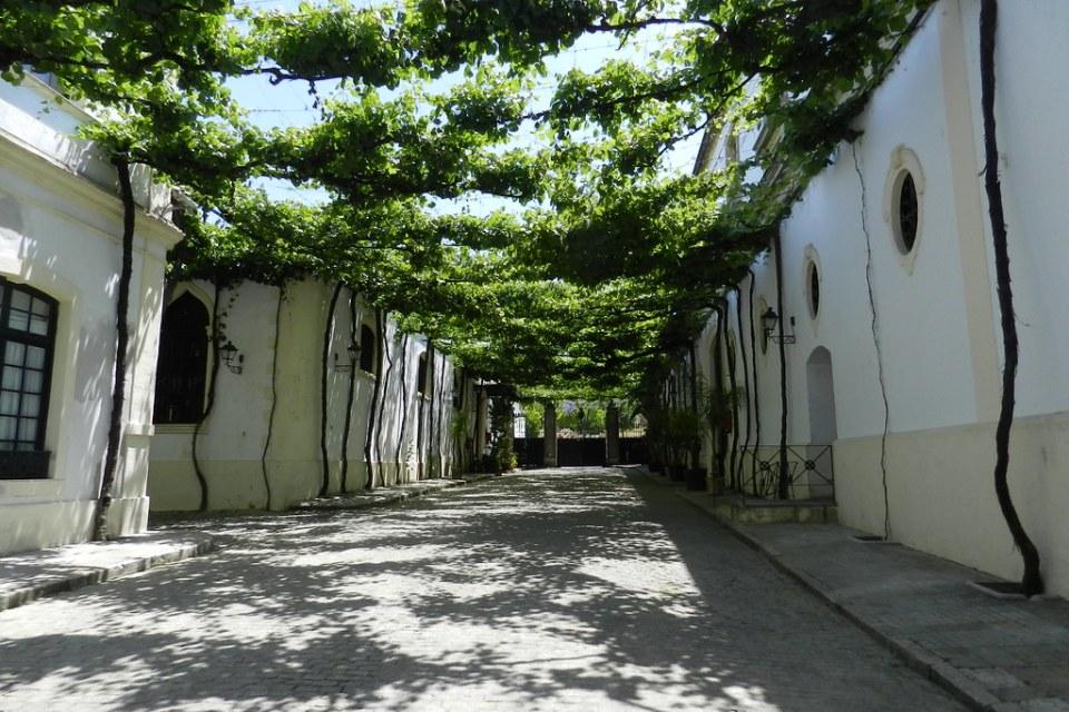 calle Ciegos en Bodegas Gonzalez Byass Jerez de la Frontera Cadiz 01