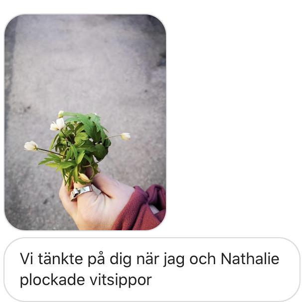 En hälsning - reaktionista.se